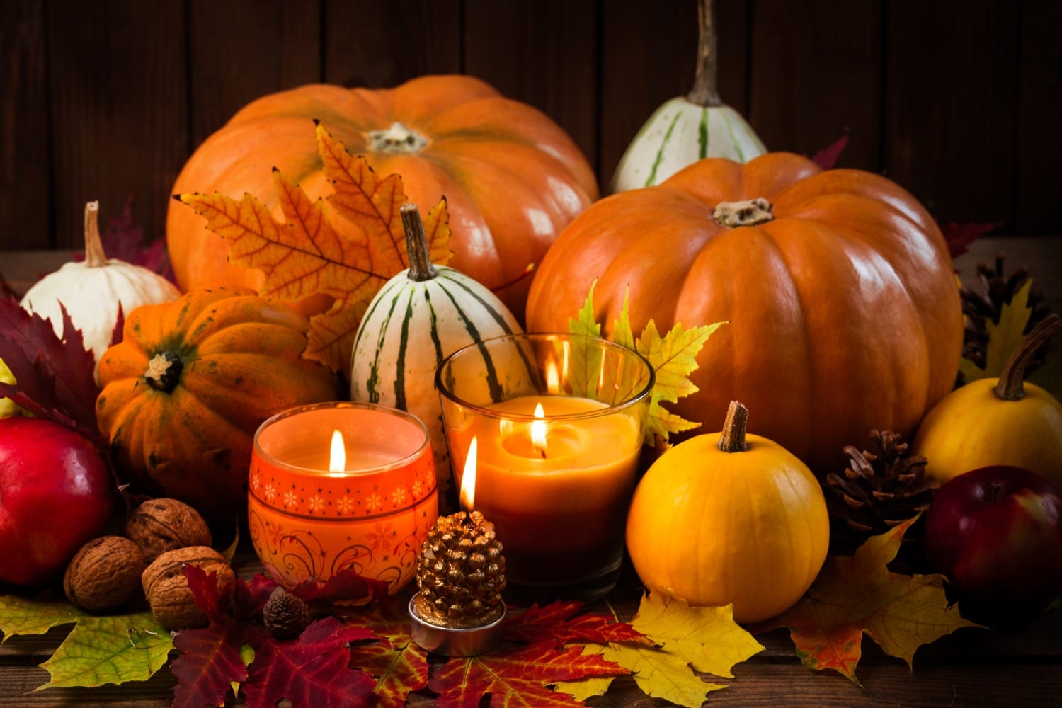Trick or Treat!…'Tis the Season! Now until January 2017… FOOD, FUN™, FREEDOM, FELLOWSHIP, during the Holidays!